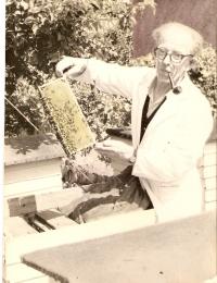 Foto/NVE Jensen som biavler.jpg